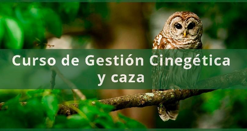 Curso de Gestión Cinegética y caza en modalidad de rececho